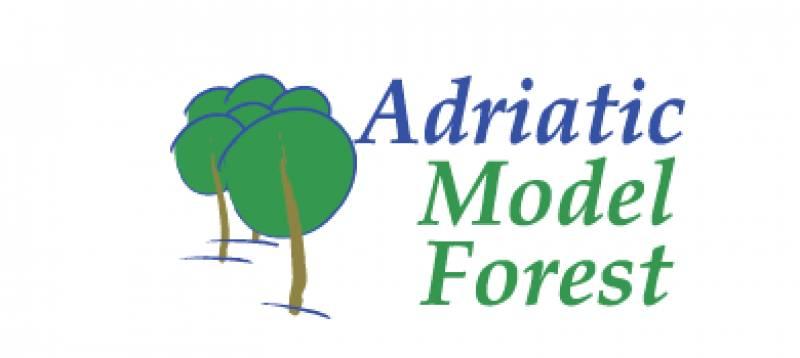 "Projekt ""Adriatic Model Forest"" – AMF"
